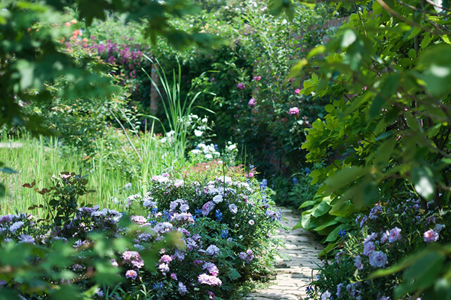 造園・植木屋・草刈りのバイト